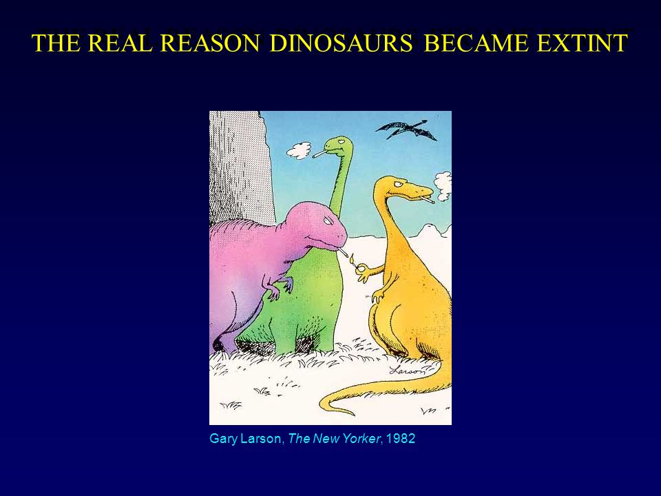 THE REAL REASON DINOSAURS BECAME EXTINT