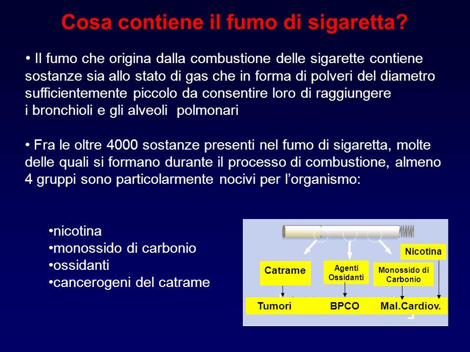 Cosa contiene il fumo di sigaretta Tumori BPCO Mal.Cardiov.