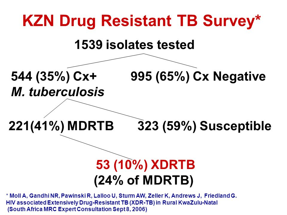 KZN Drug Resistant TB Survey*