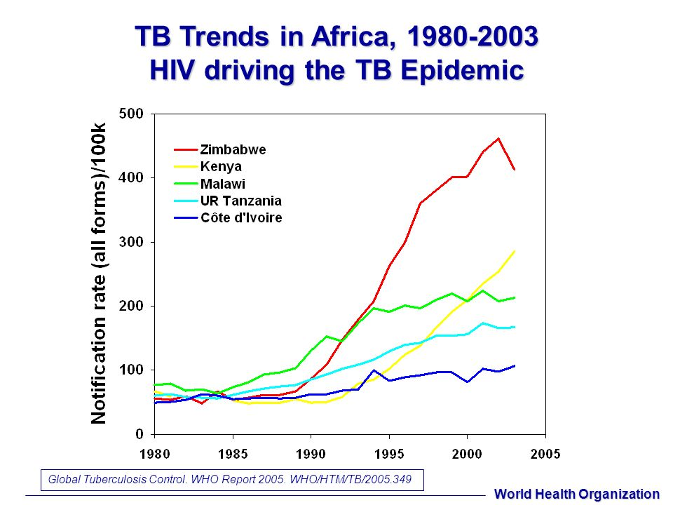 TB Trends in Africa, 1980-2003 HIV driving the TB Epidemic