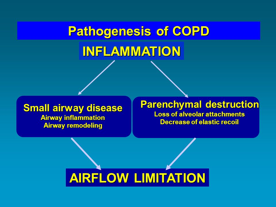 Pathogenesis of COPD INFLAMMATION AIRFLOW LIMITATION