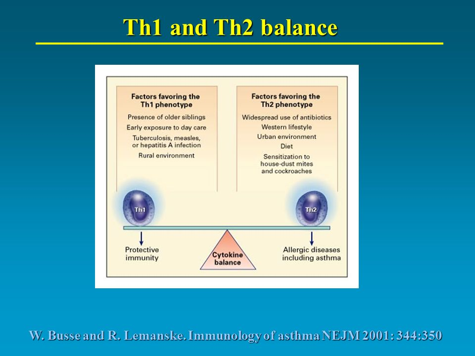 Th1 and Th2 balance W. Busse and R. Lemanske. Immunology of asthma NEJM 2001: 344:350