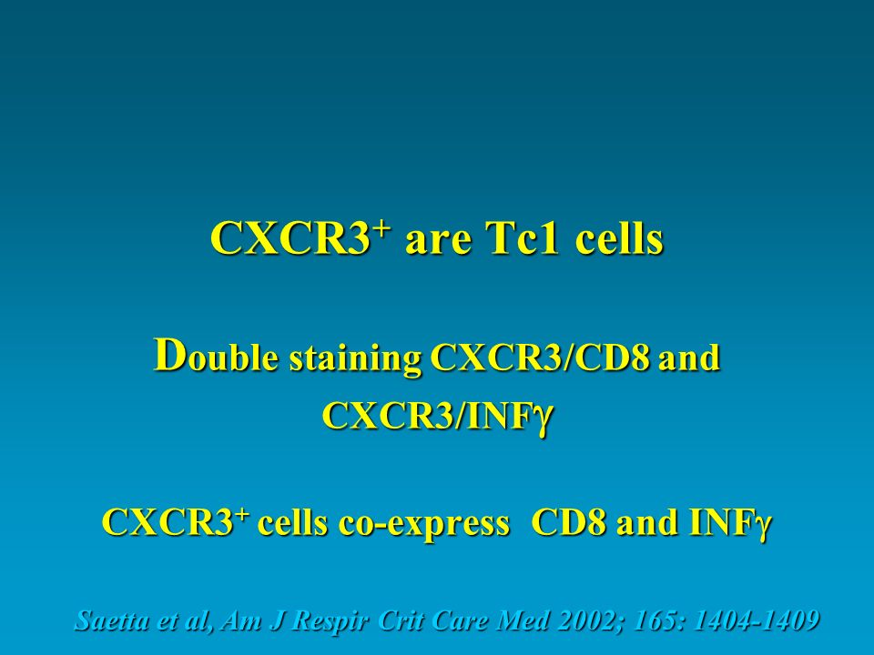 CXCR3+ are Tc1 cells Double staining CXCR3/CD8 and CXCR3/INF CXCR3+ cells co-express CD8 and INF