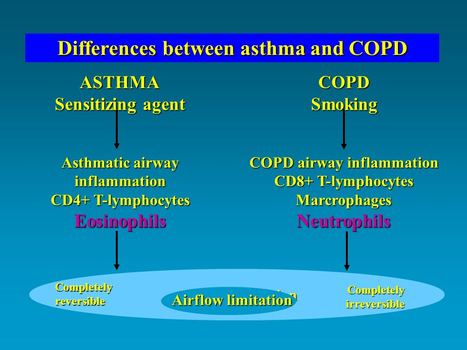 Differences between asthma and COPD COPD airway inflammation