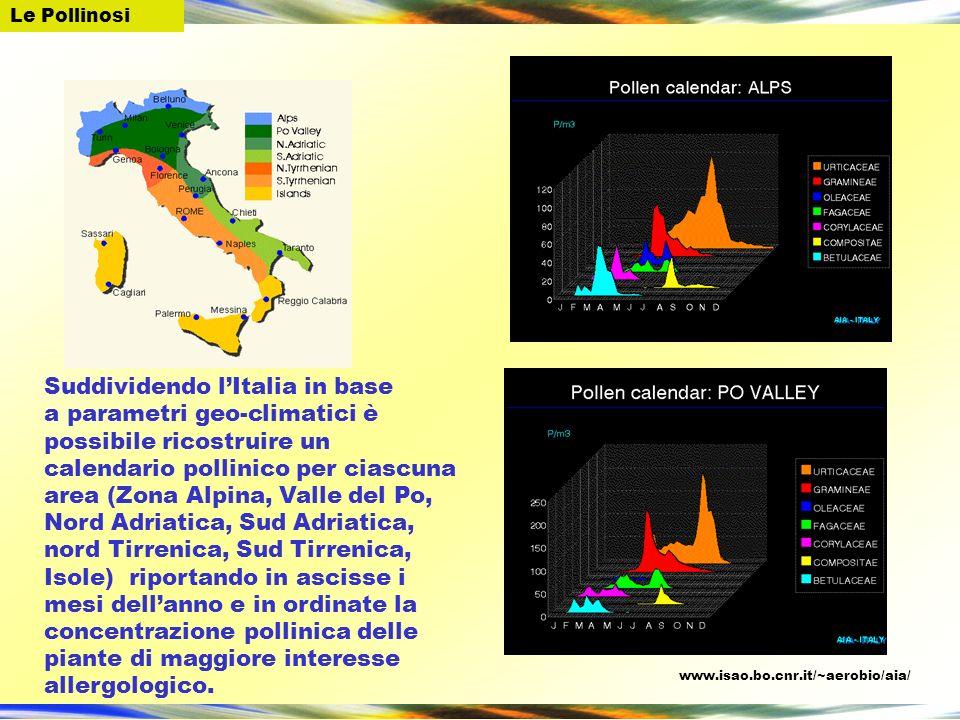 Suddividendo l'Italia in base
