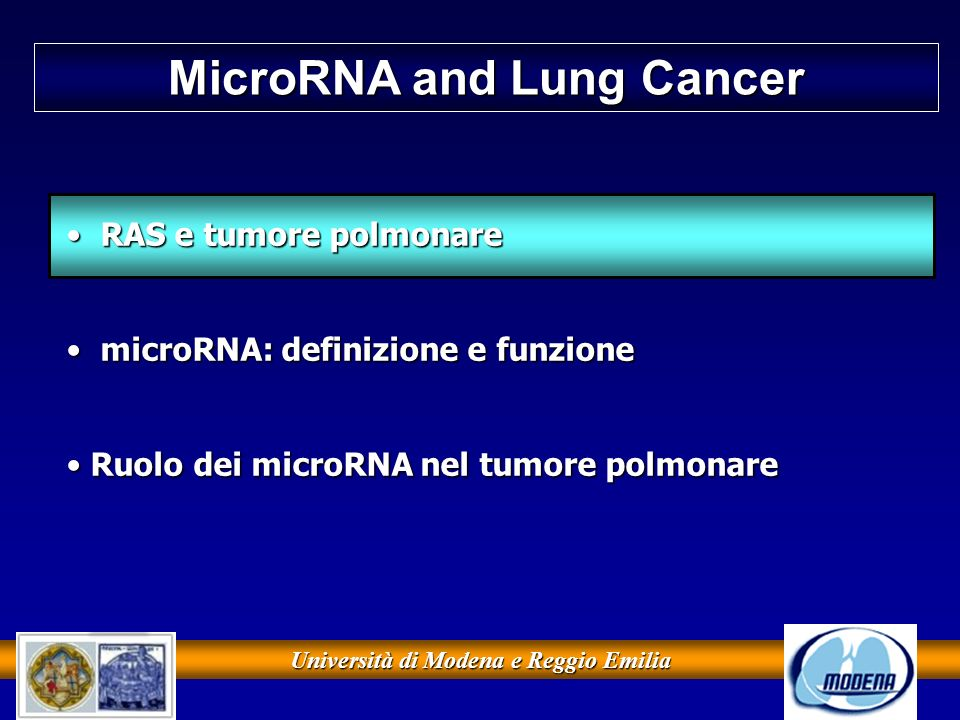 MicroRNA and Lung Cancer Università di Modena e Reggio Emilia