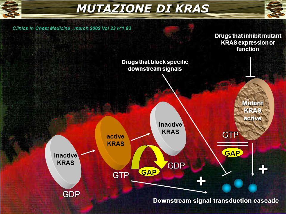 + + MUTAZIONE DI KRAS GTP GDP GTP GDP GAP GAP Mutant KRAS active