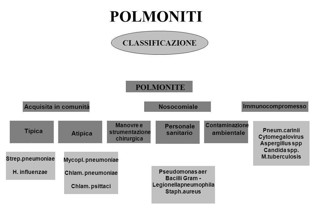 Legionellapneumophila