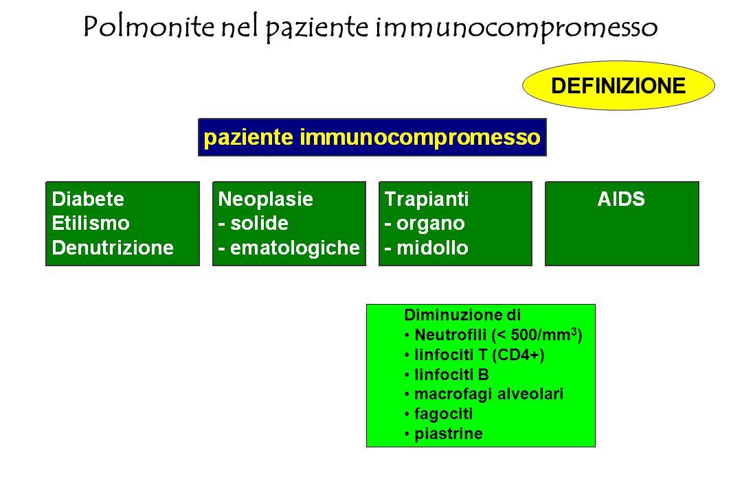 Polmonite nel paziente immunocompromesso