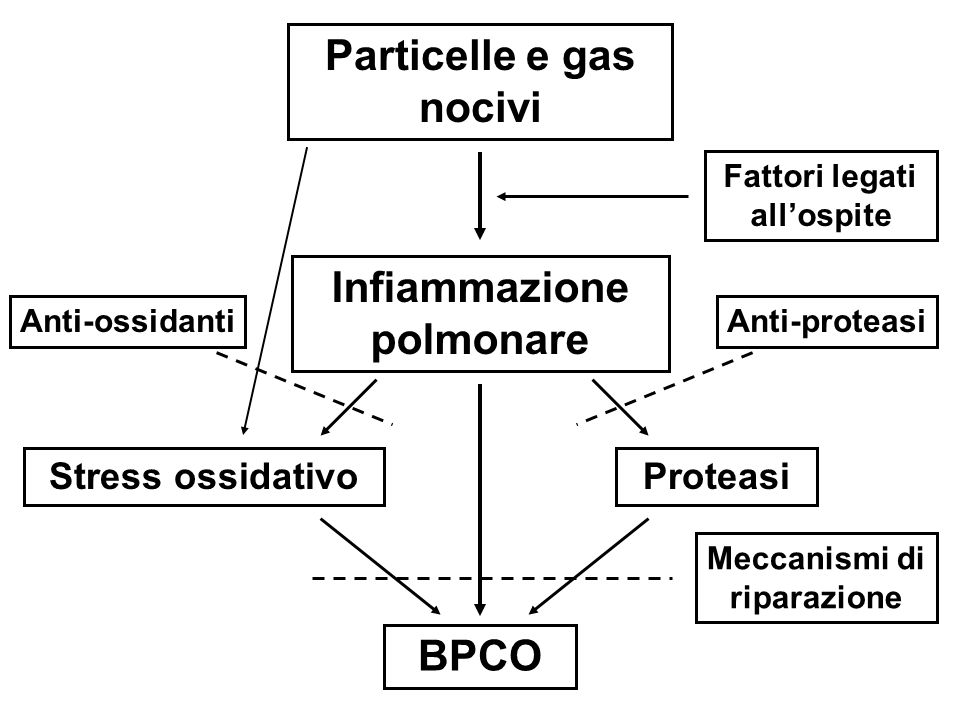 Particelle e gas nocivi Infiammazione polmonare BPCO