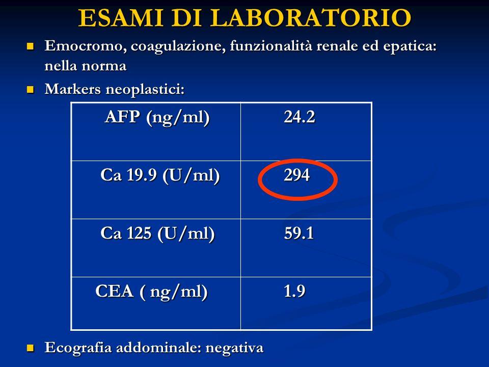 ESAMI DI LABORATORIO AFP (ng/ml) 24.2 Ca 19.9 (U/ml) 294 Ca 125 (U/ml)