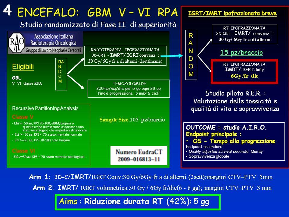 ENCEFALO: GBM V – VI RPA Studio randomizzato di Fase II di superiorità