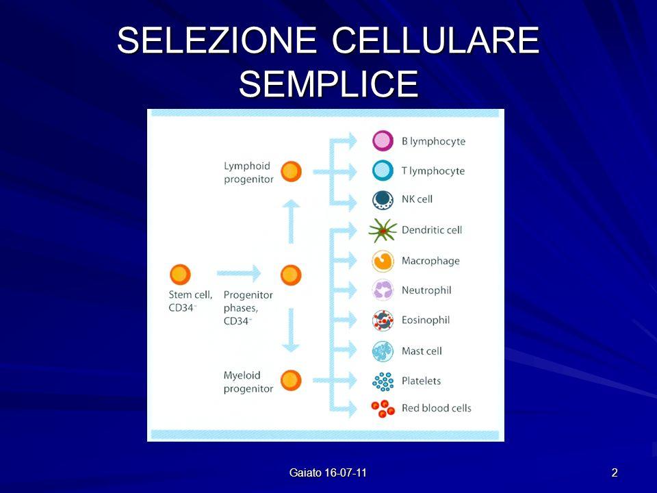 SELEZIONE CELLULARE SEMPLICE