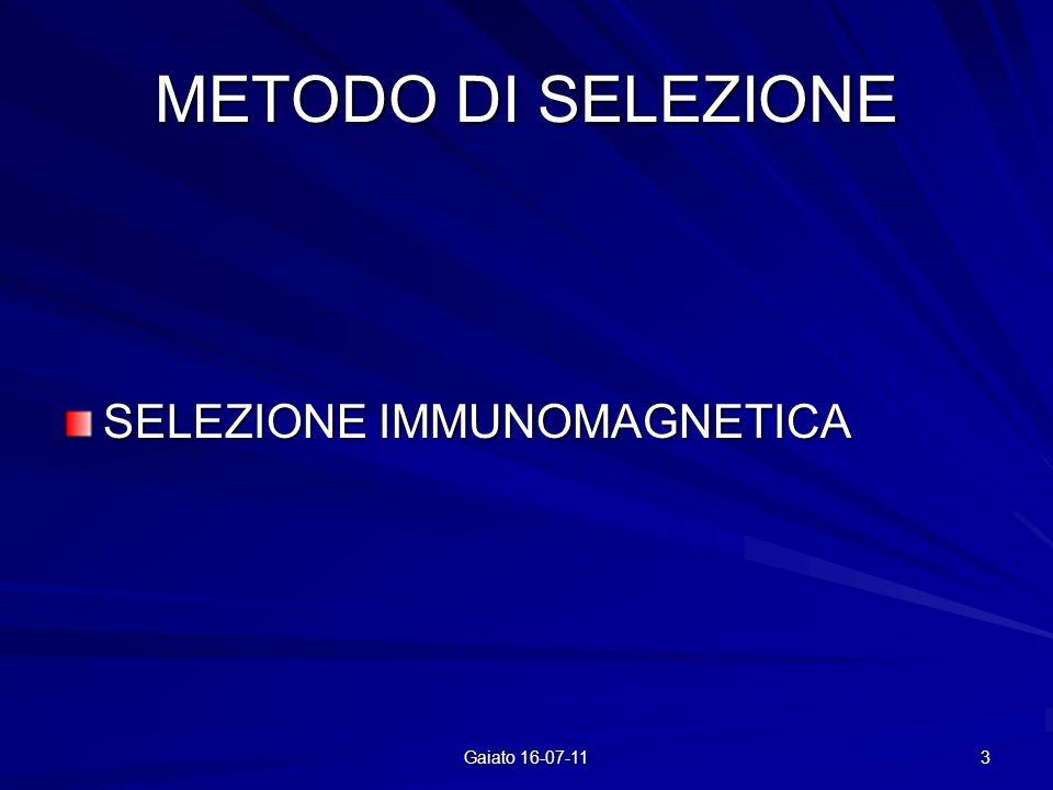 METODO DI SELEZIONE SELEZIONE IMMUNOMAGNETICA Gaiato 16-07-11