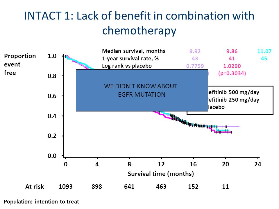 INTACT 1: Lack of benefit in combination with chemotherapy