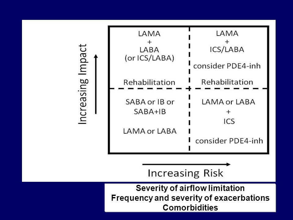 Severity of airflow limitation Frequency and severity of exacerbations