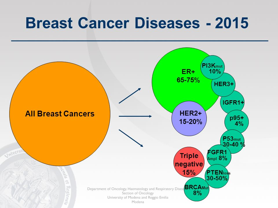 Breast Cancer Diseases - 2015