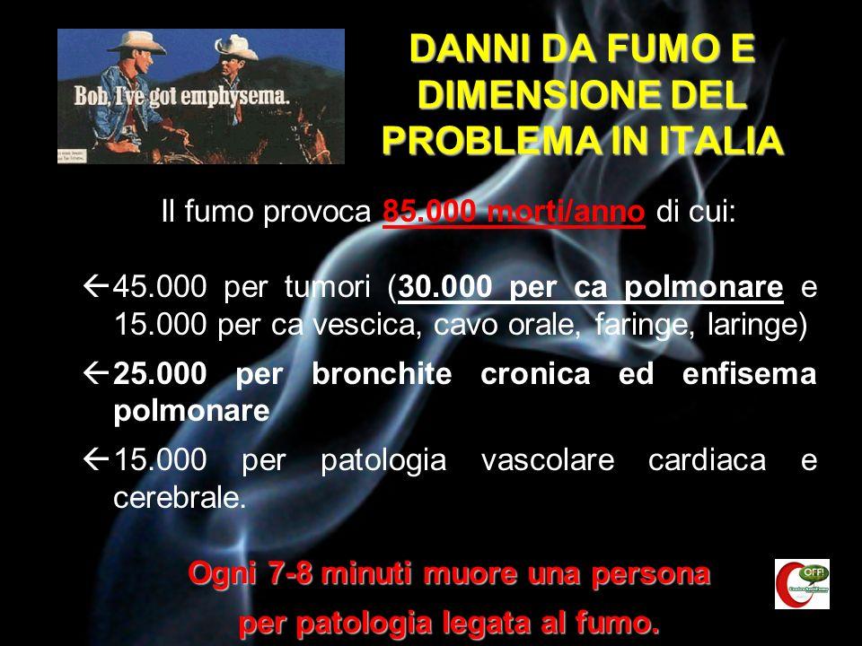 DANNI DA FUMO E DIMENSIONE DEL PROBLEMA IN ITALIA
