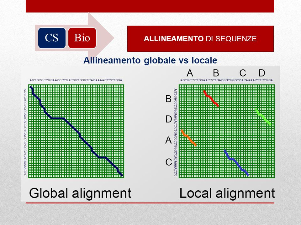 Allineamento globale vs locale