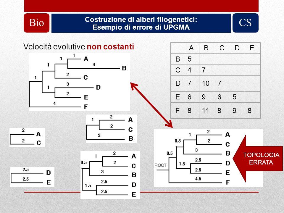 Costruzione di alberi filogenetici: Esempio di errore di UPGMA
