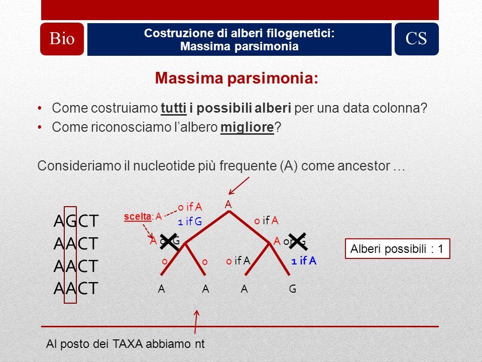 Costruzione di alberi filogenetici: