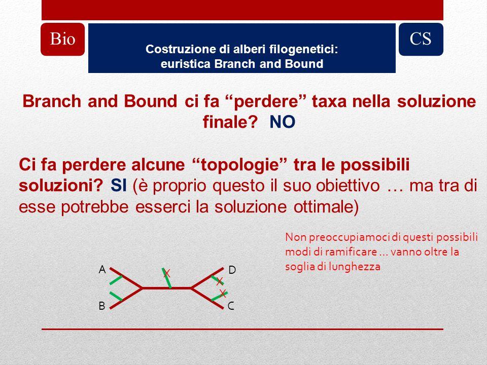 Bio Costruzione di alberi filogenetici: euristica Branch and Bound. CS. Branch and Bound ci fa perdere taxa nella soluzione finale NO.