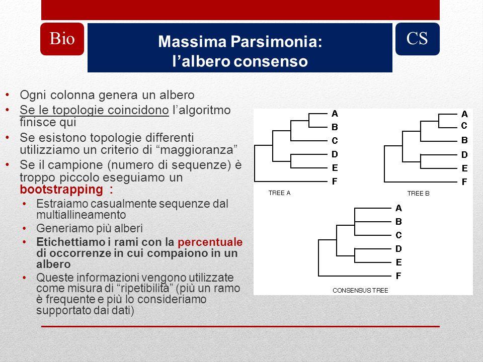 Bio CS Massima Parsimonia: l'albero consenso