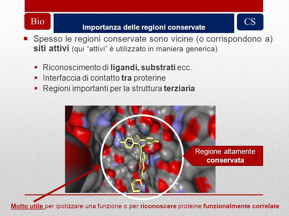 Importanza delle regioni conservate