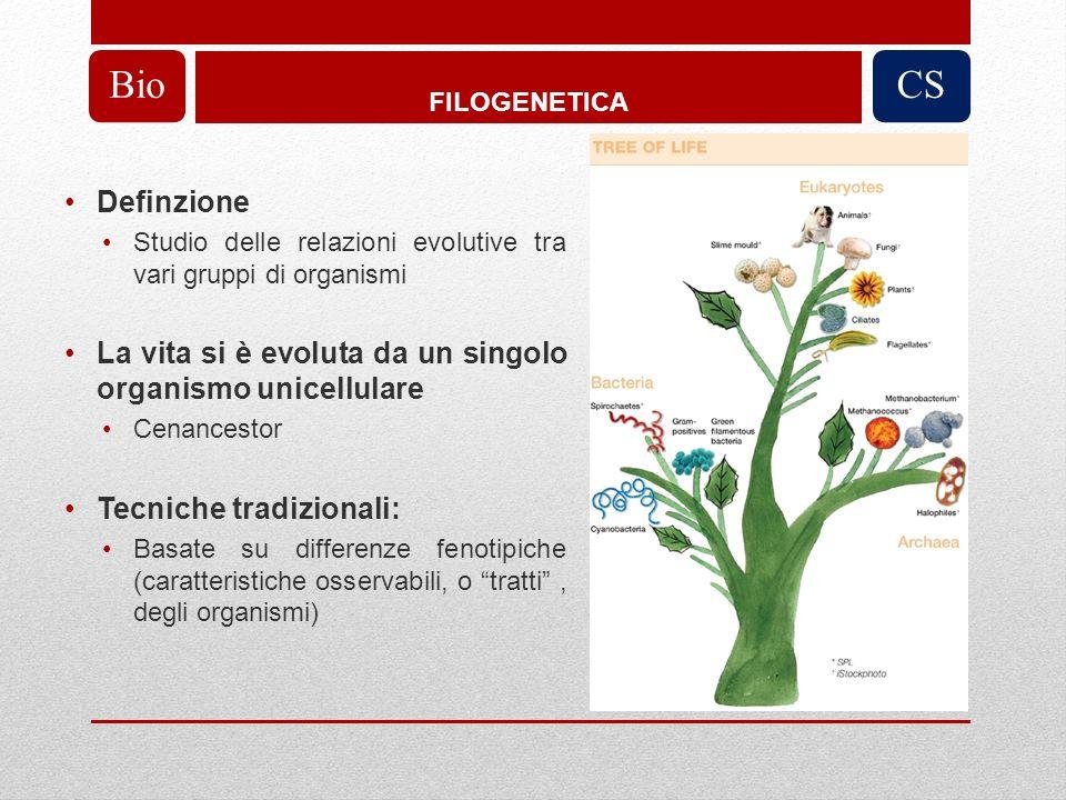 BioFILOGENETICA. CS. Definzione. Studio delle relazioni evolutive tra vari gruppi di organismi.