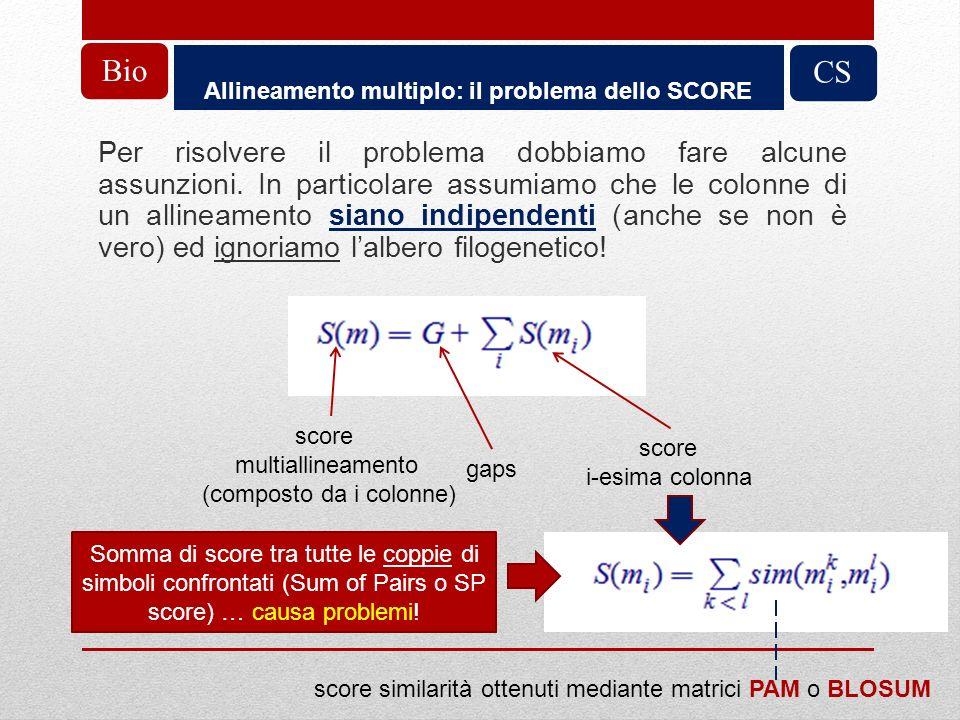 Allineamento multiplo: il problema dello SCORE