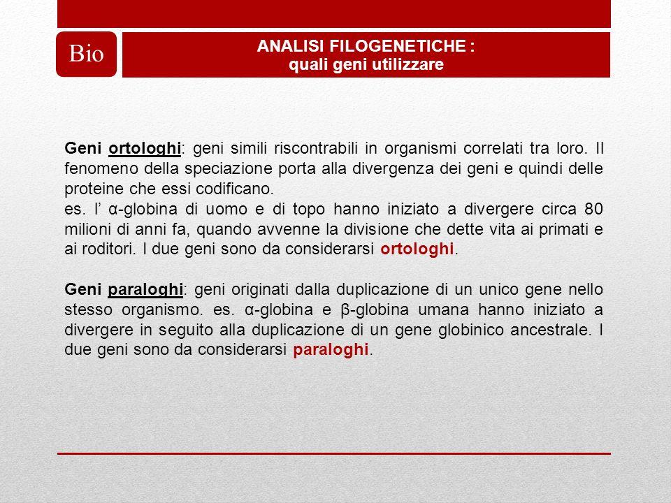 ANALISI FILOGENETICHE :