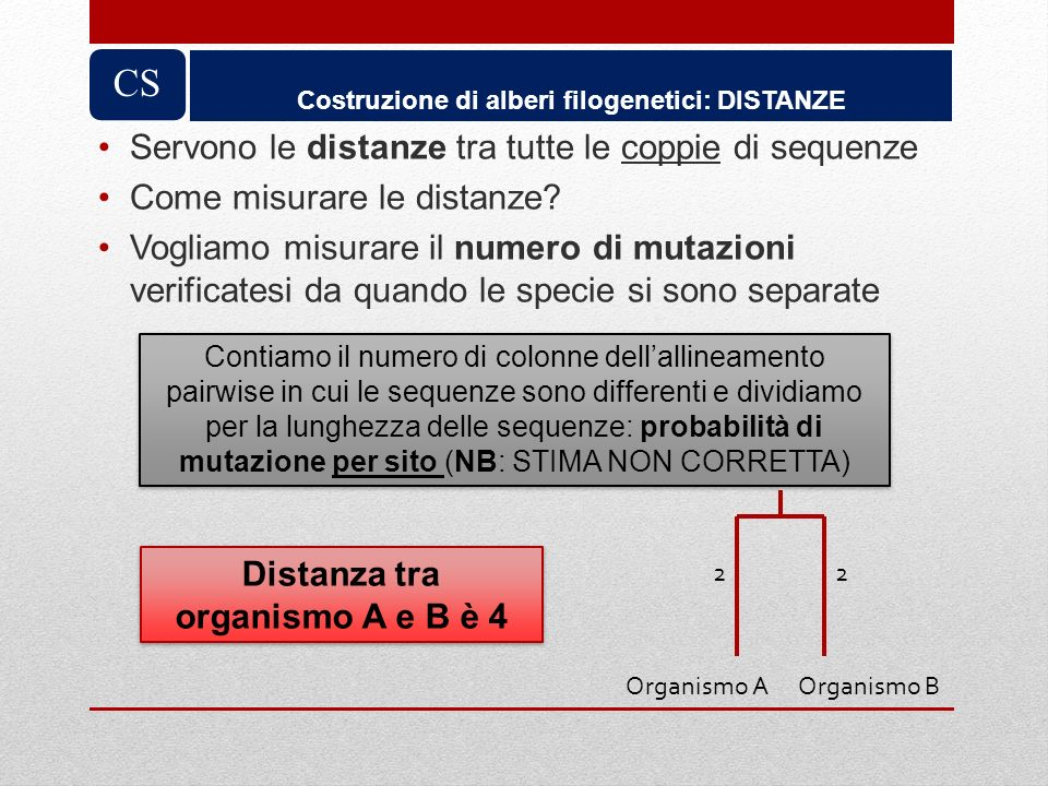 CS Servono le distanze tra tutte le coppie di sequenze