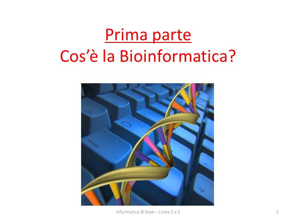 Prima parte Cos'è la Bioinformatica