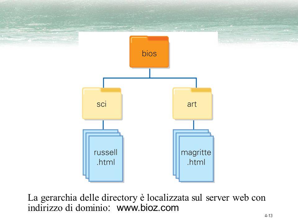 La gerarchia delle directory è localizzata sul server web con indirizzo di dominio: www.bioz.com