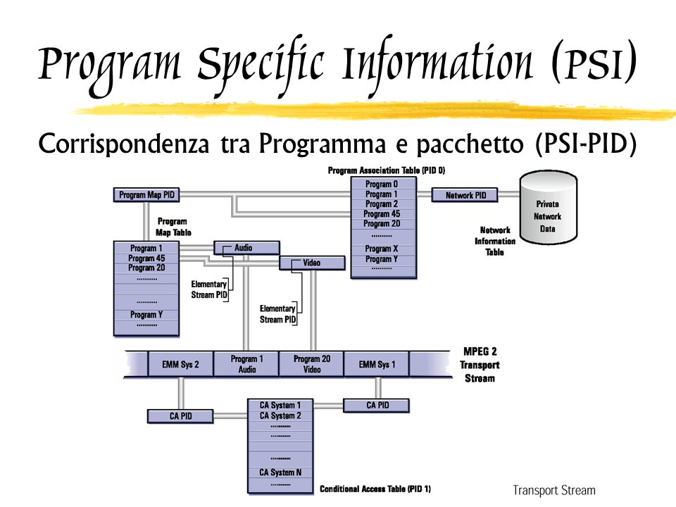 Program Specific Information (PSI)