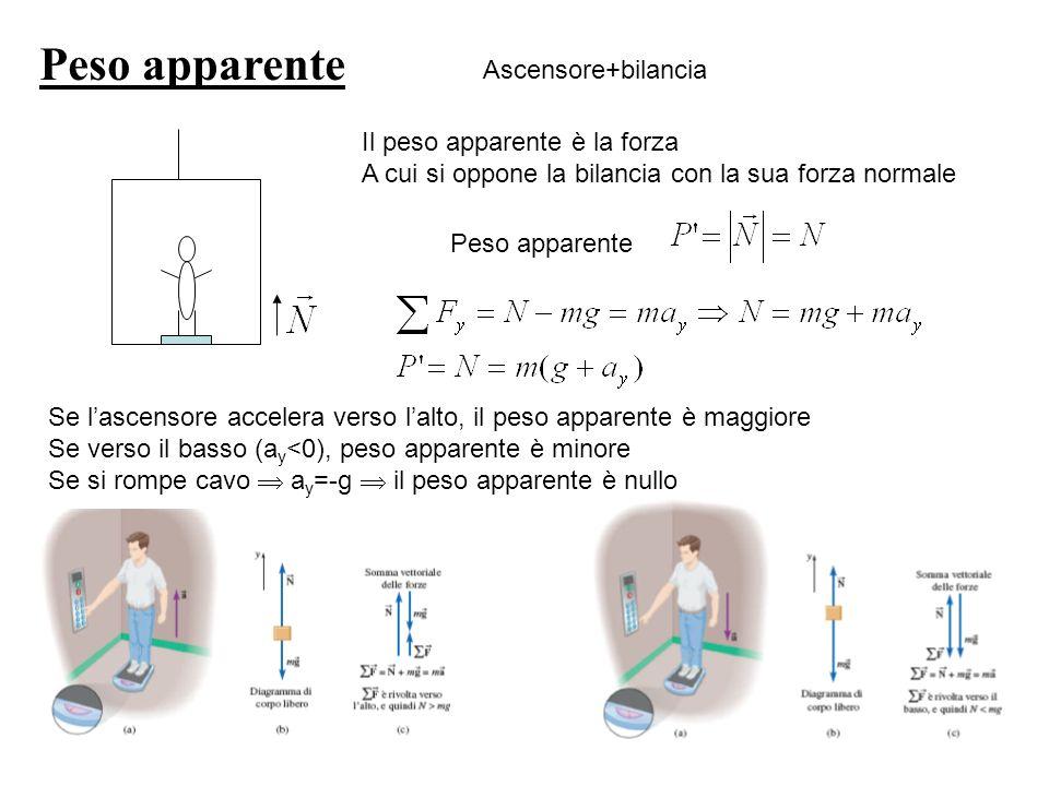 Peso apparente Ascensore+bilancia Il peso apparente è la forza