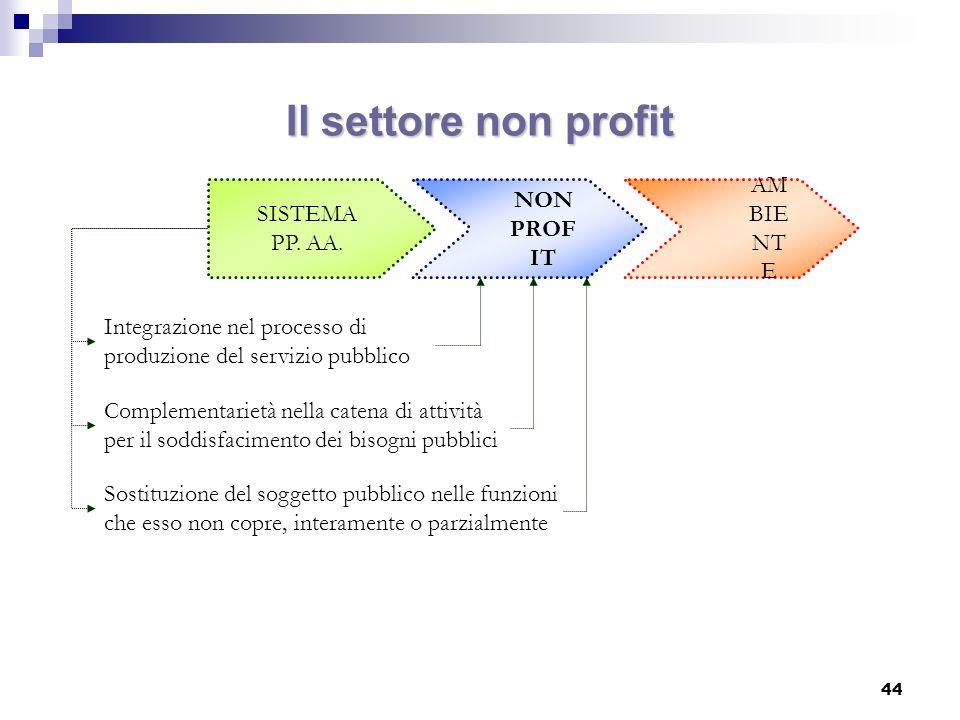 Il settore non profit AMBIENTE NON SISTEMA PROFIT PP. AA.