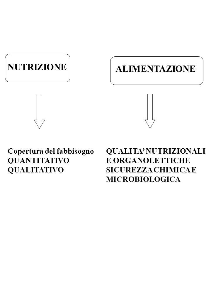 NUTRIZIONE ALIMENTAZIONE Copertura del fabbisogno QUANTITATIVO