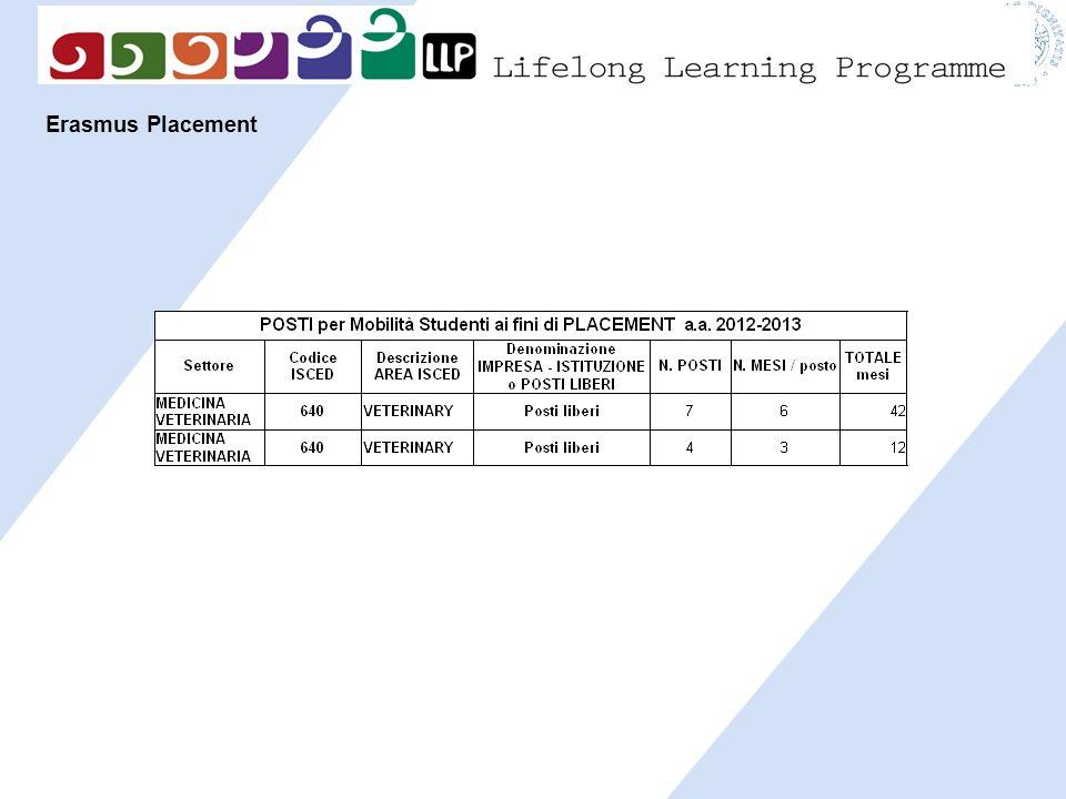 Erasmus Placement 19