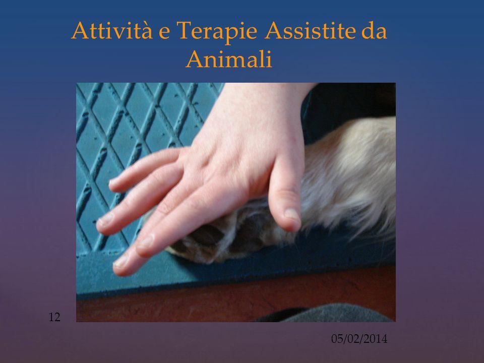 Attività e Terapie Assistite da Animali