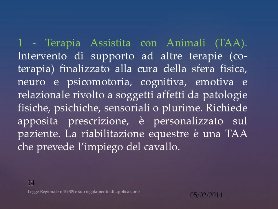 1 - Terapia Assistita con Animali (TAA)
