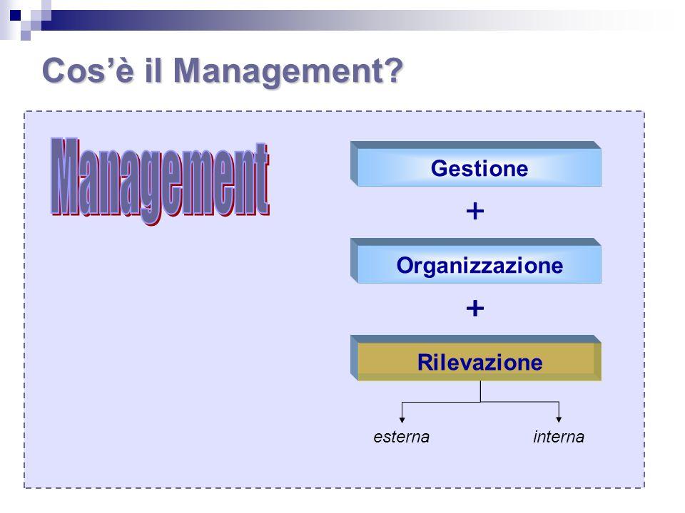 Cos'è il Management Management Gestione Organizzazione Rilevazione