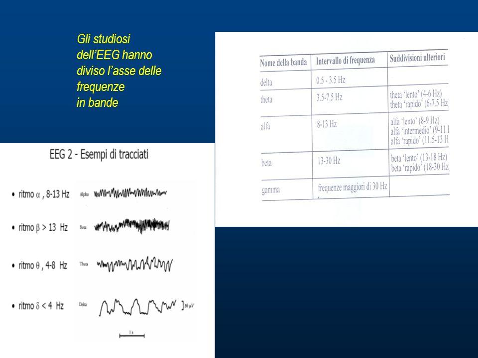 Gli studiosi dell'EEG hanno diviso l'asse delle frequenze in bande