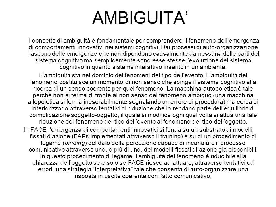 AMBIGUITA'