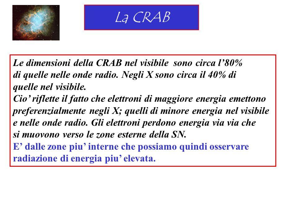 La CRAB Le dimensioni della CRAB nel visibile sono circa l'80%