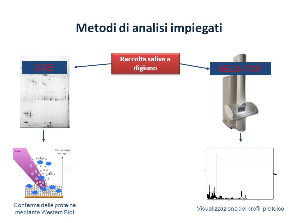 Metodi di analisi impiegati