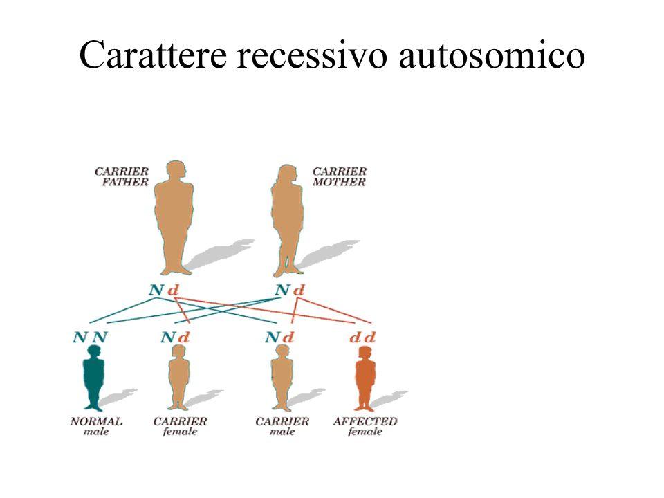 Carattere recessivo autosomico
