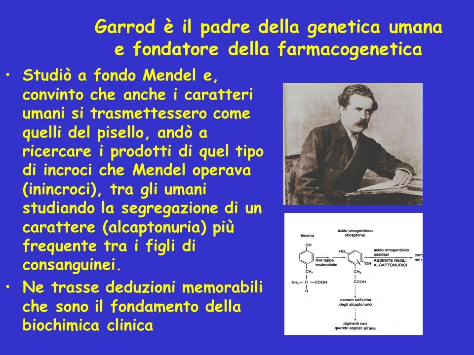 Garrod è il padre della genetica umana e fondatore della farmacogenetica