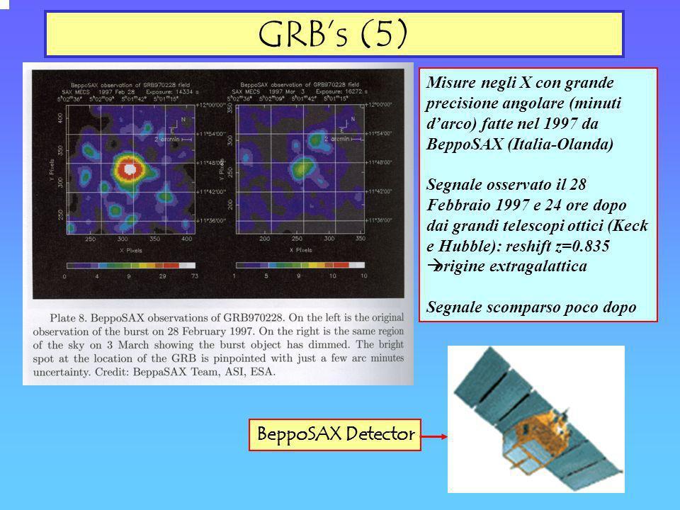 GRB's (5) BeppoSAX Detector