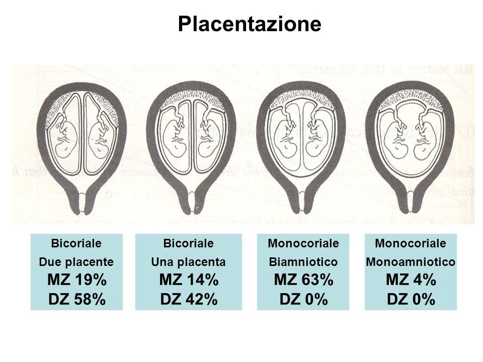 Placentazione MZ 19% DZ 58% MZ 14% DZ 42% MZ 63% DZ 0% MZ 4% DZ 0%